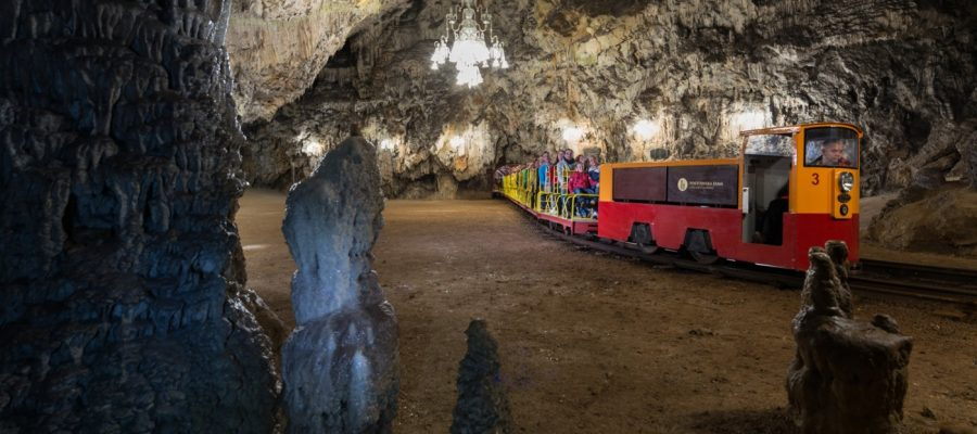 Postojna Cave Train 3_I_M_011